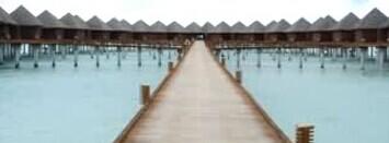 马尔代夫双鱼岛度水上屋