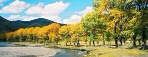 稻城亚丁 傍河与色拉