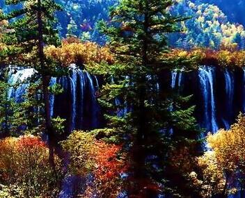 诺日朗瀑布海拔2365米,高25米,宽320米