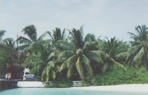 马尔代夫椰子岛Kurumba Maldives