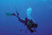 马尔代夫天堂岛深海潜水